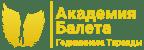 Академия балета Логотип
